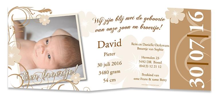 Geboortekaarten David