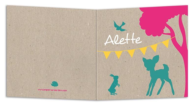 Geboortekaarten Alette