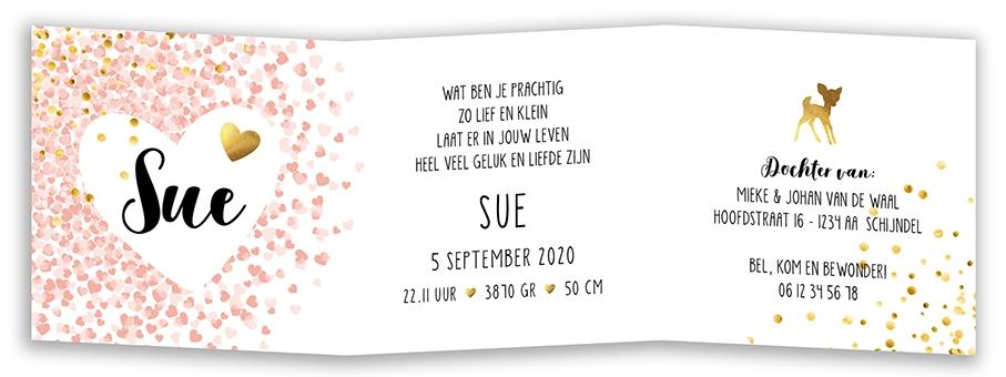 Geboortekaarten Sue