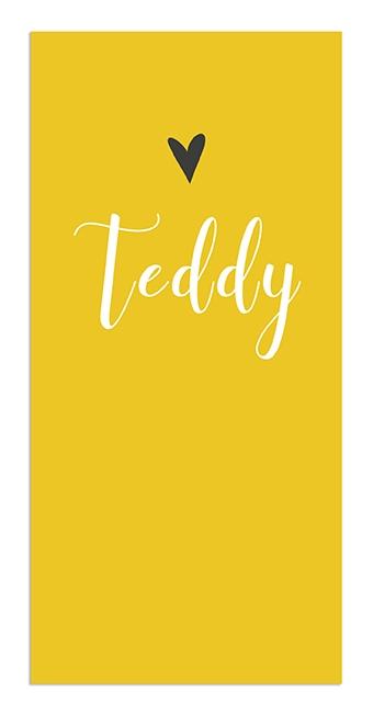 Geboortekaarten Teddy