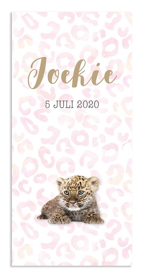 Geboortekaarten Joekie