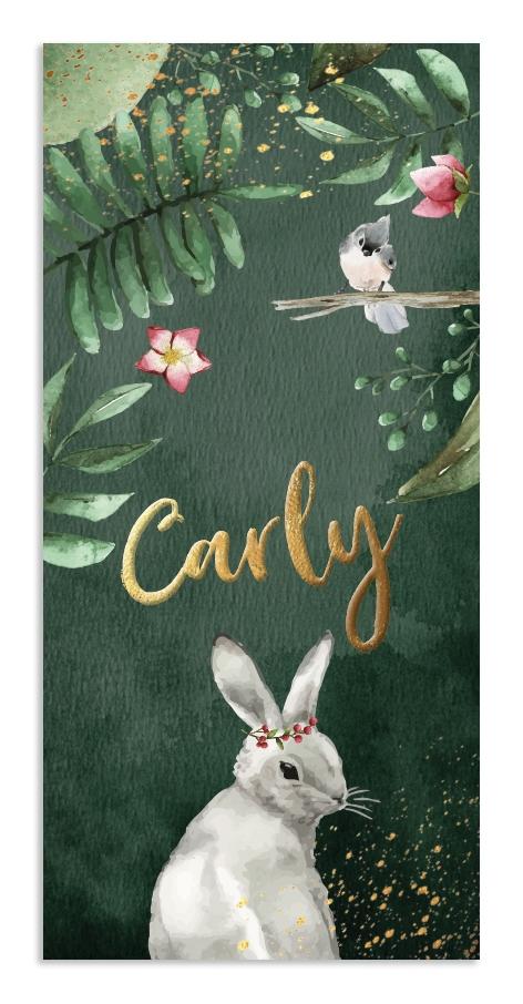 Geboortekaarten Carly