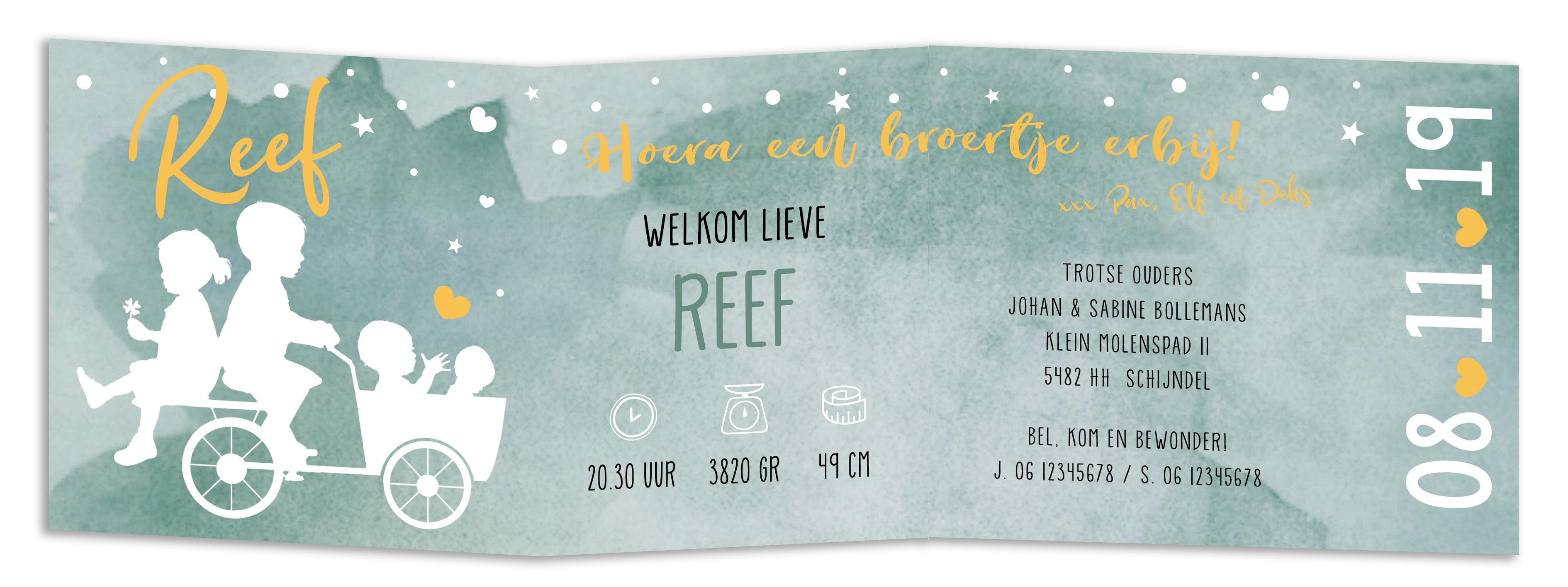 Geboortekaarten Reef