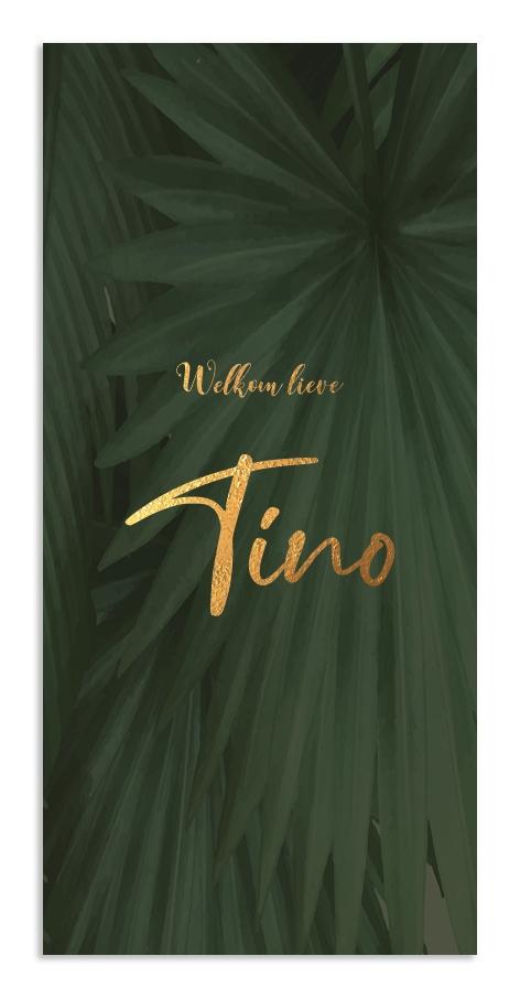 Geboortekaarten Tino
