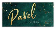 Geboortekaarten Pavel